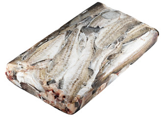 frozen in a block of ice fish, pollock. isolated