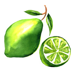 Limes with slices and leaves isolated