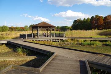 秋の公園の木道