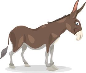 funny donkey cartoon illustration