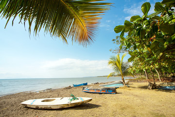 Play Tarcoles  Costa Rica