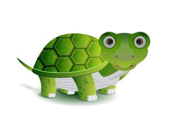 green turtle illustration