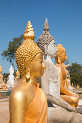 Buddha statues image