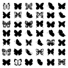 Great collection of butterflies