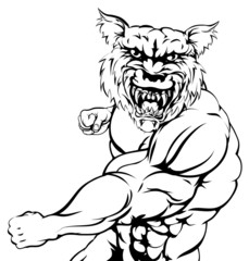 Wolf sports mascot punching