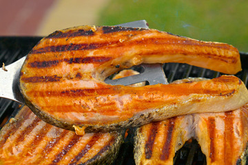 Portion of fresh salmon fillet cooced on a grill