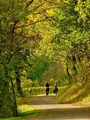 Couple retraite tourisme détente promenade