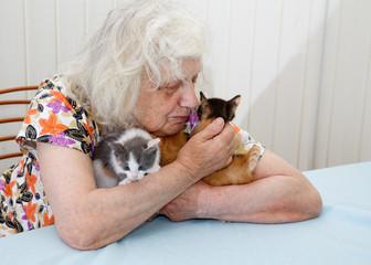 The grandmother holding three  kittens