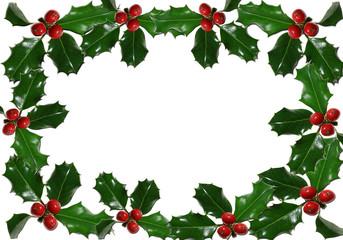 Fondo blanco, hojas de acebo, navidad