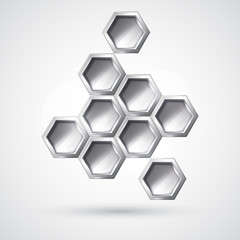Silver hexagon form