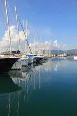 Boats Moored in a Marina