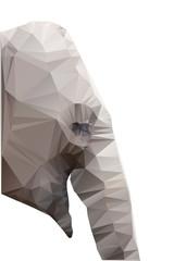Polygonal illustration of head of elephant isolated