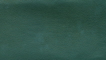 Surface of green leather
