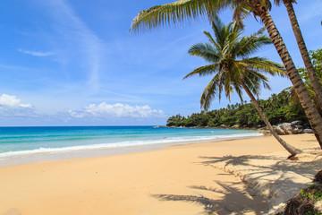 Aluminium Prints Beach Tropical beach in Phuket, Thailand
