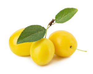yellow cherry plums isolated on the white background
