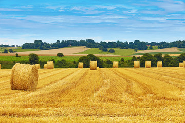 Photo sur Toile Sauvage Golden hay bales in countryside