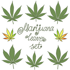 Set of natural marijuana leaves