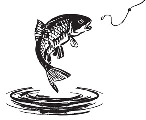 Fish jumping out of the water