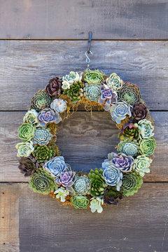 Cactus Wreath