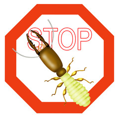 stop termite, stop insect