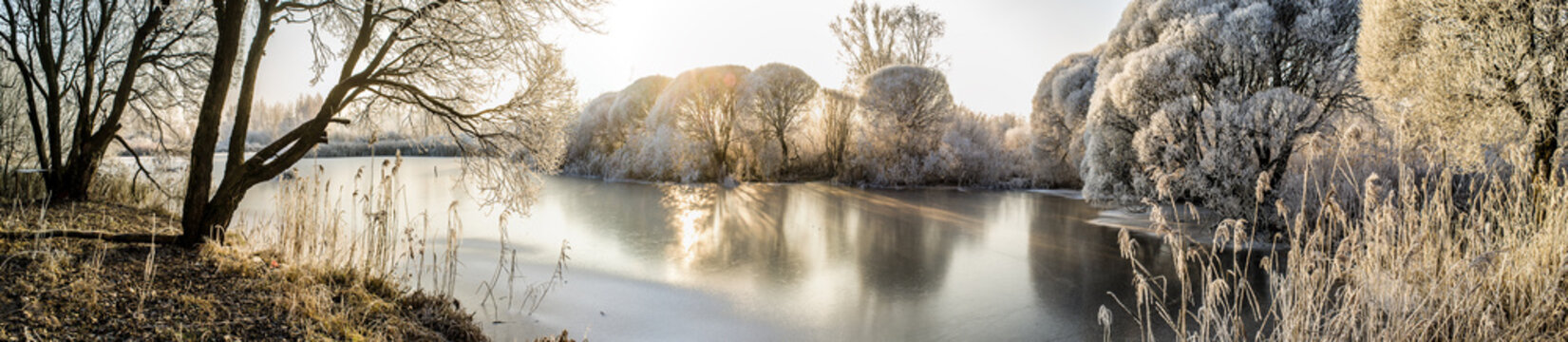 Panorama of the frozen lake and snow-covered trees