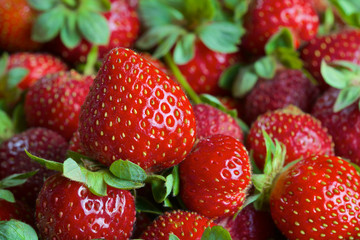 Red ripe fresh strawberries