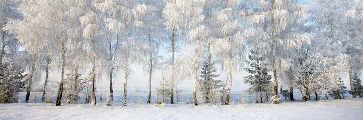 Walk through the beautiful places frosty Russian winter