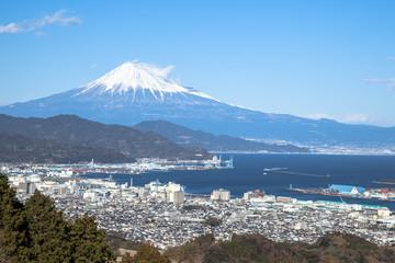 日本平から望む富士山