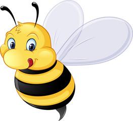 Bilder Und Videos Suchen Bienchen