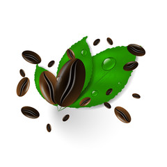 Coffee beans on a white background, green leaves and water drops