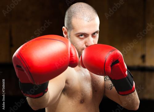 boks-golie-foto