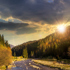 forest river in mountains with stones at sunset