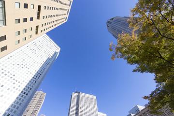 東京都庁と新宿高層ビル街を見上げる