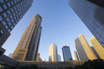 夕景の東京都庁と 新宿高層ビル街を見上げる