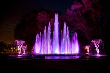 Photo sur Aluminium Fontaine Music fountain Margaret Island