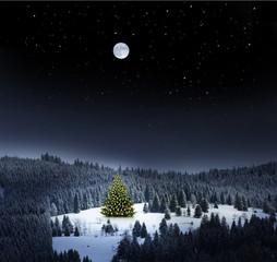 Wall Mural - Weihnachtsbaum in Winterlandschaft bei Nacht
