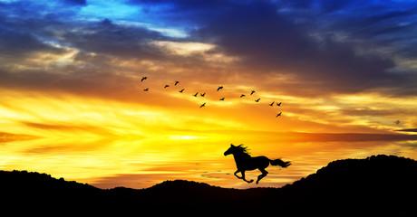 caballo corriendo por la montaña del lago de colores