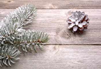 christmas decoration - white spruce branch and pine cone