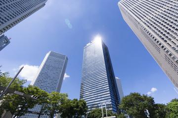 新宿高層ビル街を見上げる 青空と緑 そしてビルに差す太陽