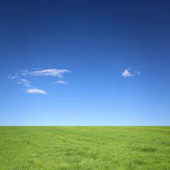 Fototapete - Himmel mit Wiese