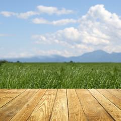 Fototapete - Landschaft  / Holz