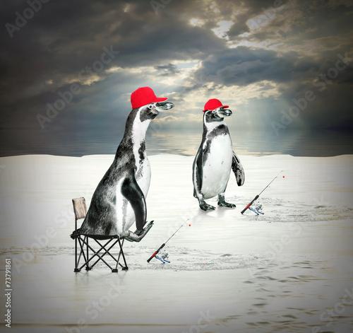 пингвин ловит рыбу видео