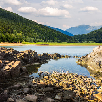lake shore with stones near pine forest on mountain