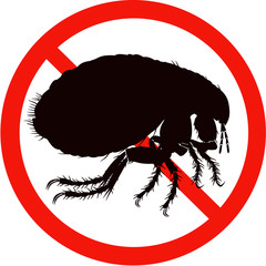 dangerous insect road signs