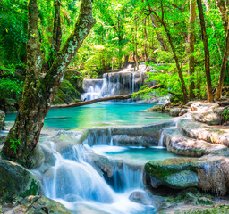 Wall Mural - Cool waterfall in deep forest