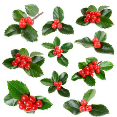 Leaves of mistletoe with berries collage, isolated on white