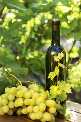 White wine bottle with grape
