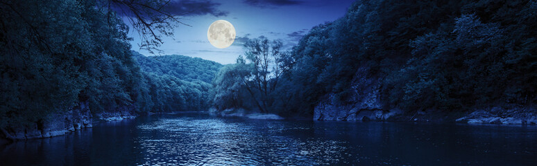 Tuinposter Rivier forest river with stones on shores at night