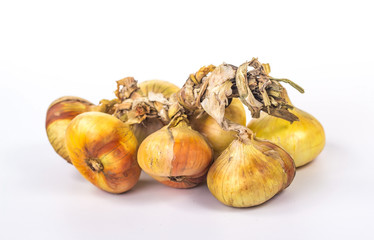 bunch of onions, isolated on white background
