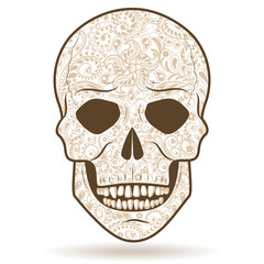 Light-colored patterned human skull